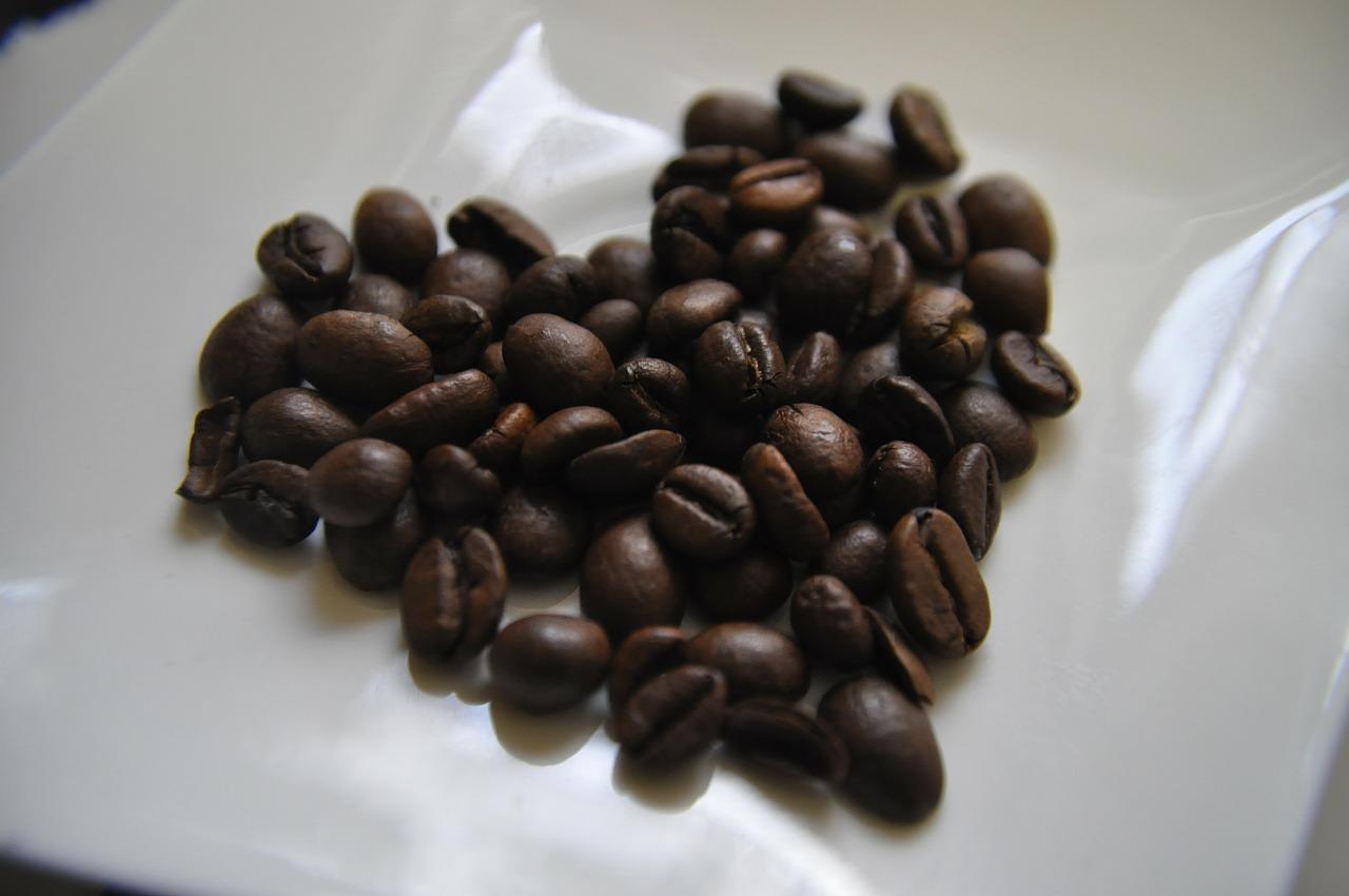 progetto solidale sul caffè Expo 2015