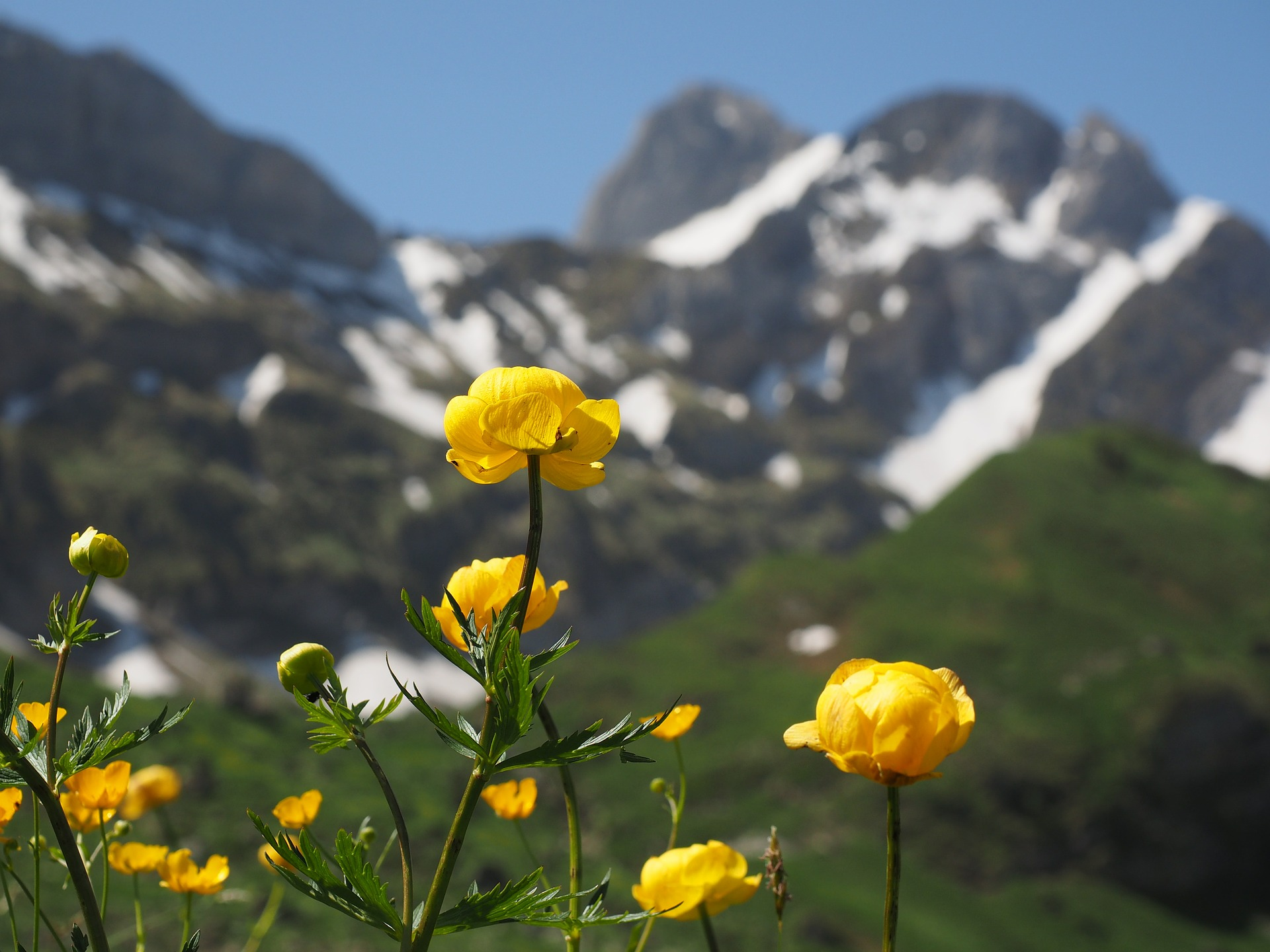 vacanze estive in montagna