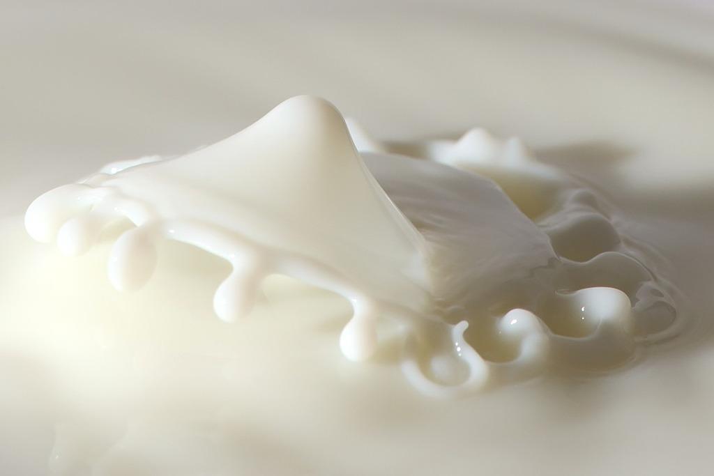 bellezza latte capra